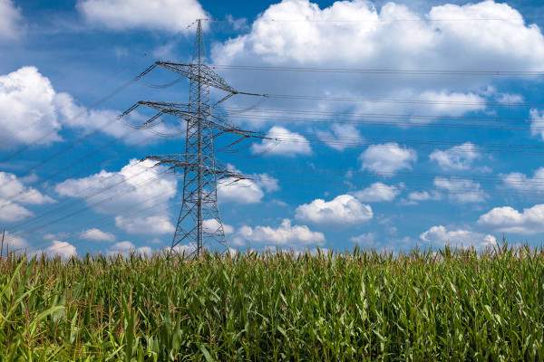 """""""Das Stromnetz ausbauen für die Energiewende"""""""